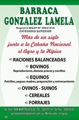 Barraca González Lamela