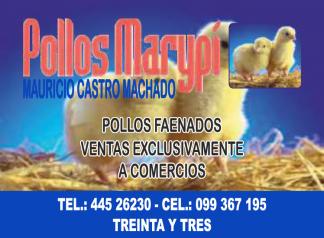 Pollos Marypi
